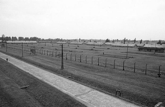 Аушвиц (35 фото)
