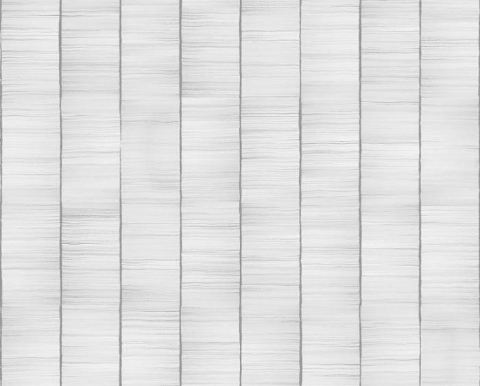Сила зума или 11 незвестных фотофактов о США (31 фото)