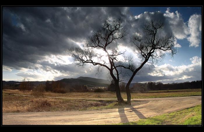 Потрясающие фотографии Роберта Мекиса (116 фото)