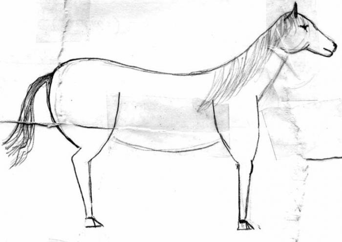 И только лошади летают вдохновенно... (4 картинки)