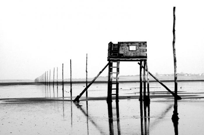 """Журнал """"Digital Camera"""" - финальные 90 фотографий"""