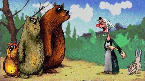 Мега-фотожаба. Заяц и медведь )) (40 работ)