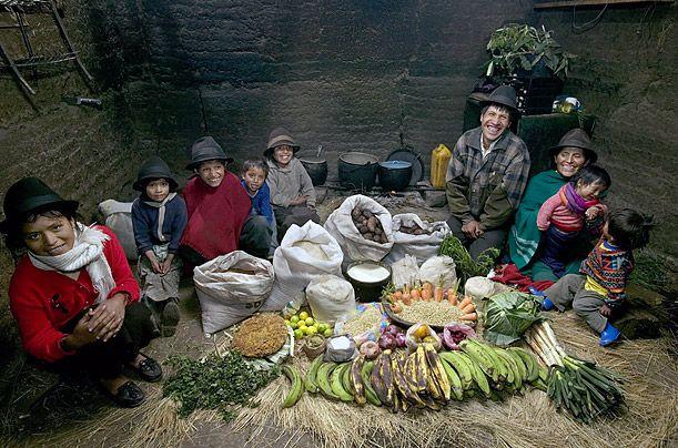 Что едят в мире? (15 фото)
