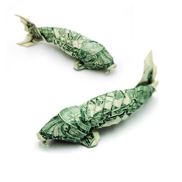 структура экономической рыба из денежных купюр земельным спорам незаменимый