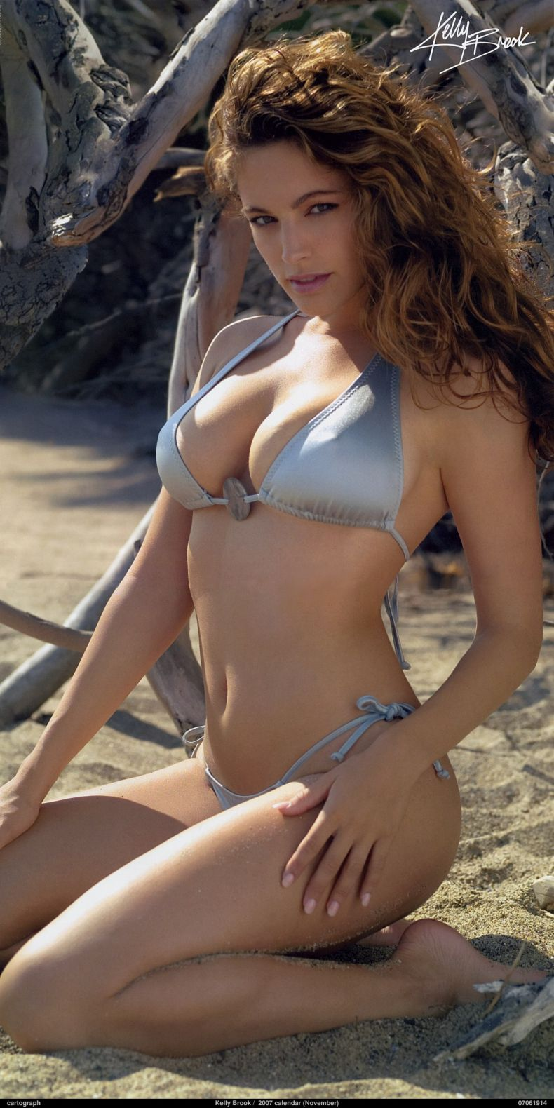 Kelly Brook (15 Фото)