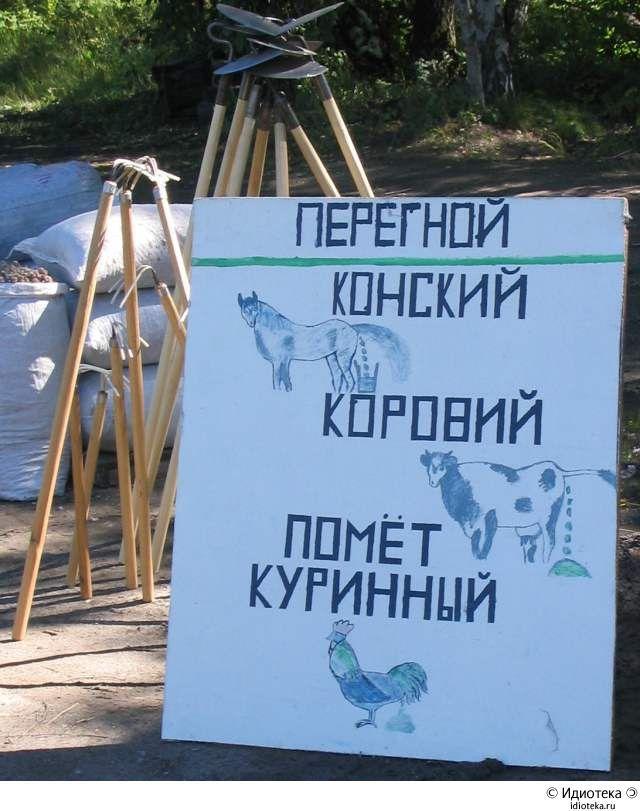 Подборка смешных надписей (71 фото)
