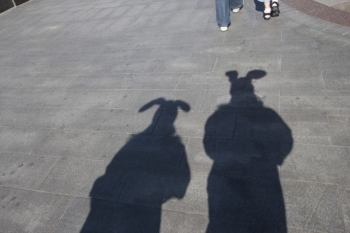 Молодцы ребята. Зайцы в городе (18 фото)