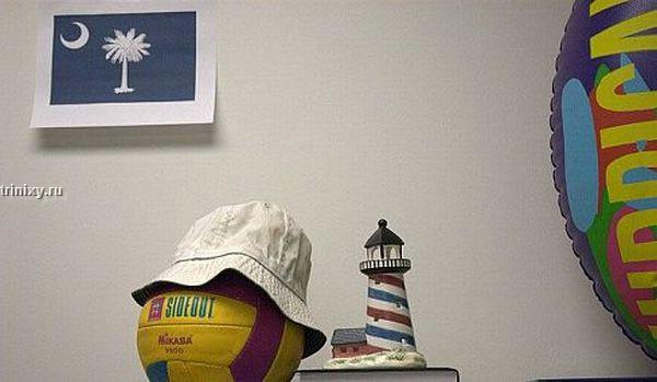 Если шеф не пускает в отпуск (6 фото)