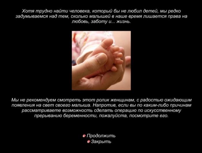 Дневник нерожденного младенца