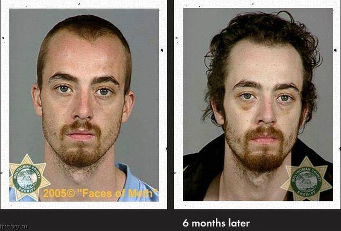 methamphetamine paper documentary