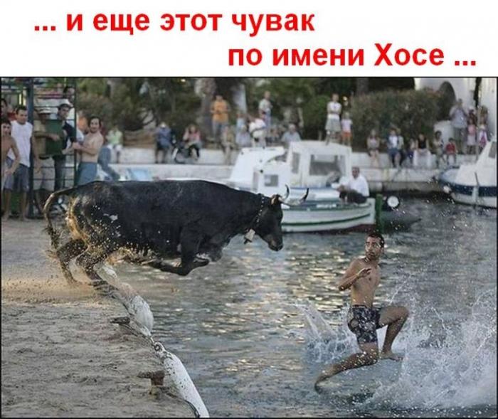 Ходящие по воде (3 картинки)