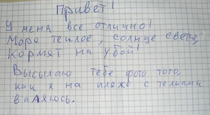 Письмо другу (2 картинки)