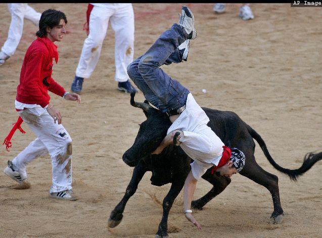 Как бычки с людьми расправлялись (17 фото)