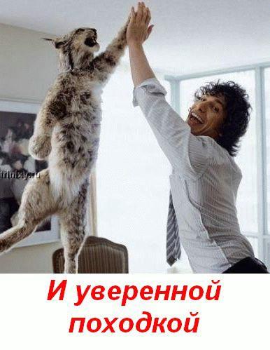 http://trinixy.ru/pics2/20070720/post_15.jpg