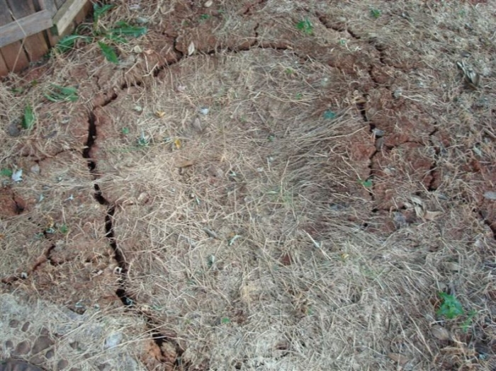 Падение метеорита (9 фото)