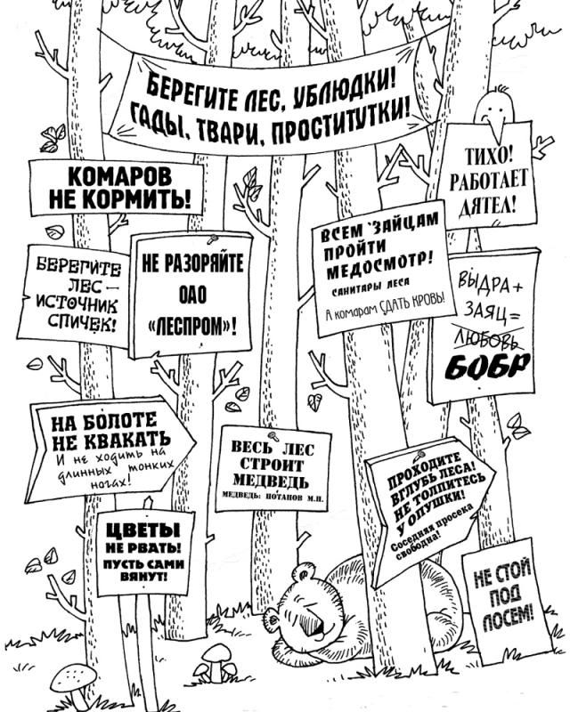 Берегите лес (2 картинки)