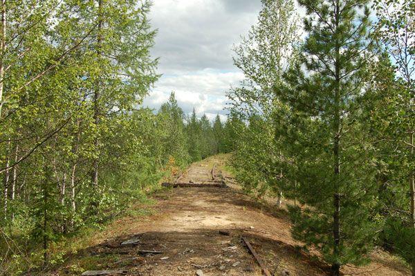 Мертвая дорога. Брошенные паровозы (47 фото)