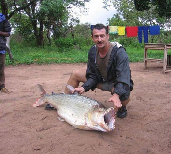 Поймали рыбку (3 фото)
