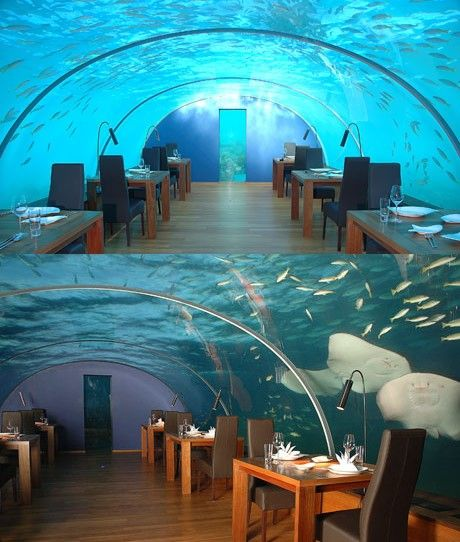 Самые необычные рестораны в мире (18 фото)