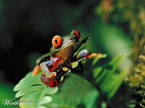 Гармония в природе (220 фото, разбито на 2 страницы)