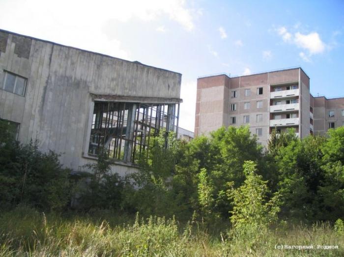 Инн городская клиническая больница 5 нижний новгород