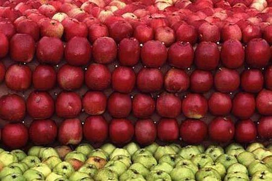 Яблочный креатив (9 фото)