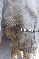 "Код ""ВТЦ9/11"" (11 фото)"