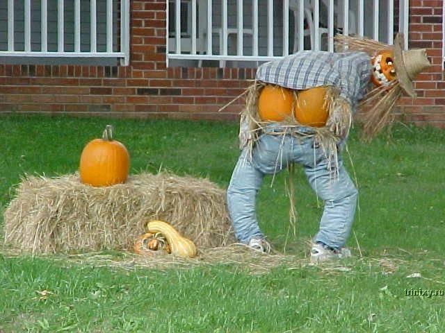 Скоро Хэллоуин! (79 фото)