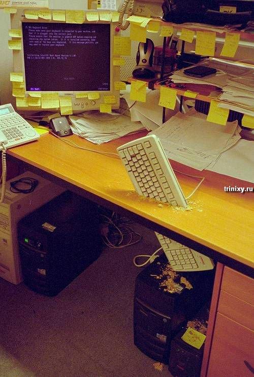 На работе спать опасно! (77 фото)
