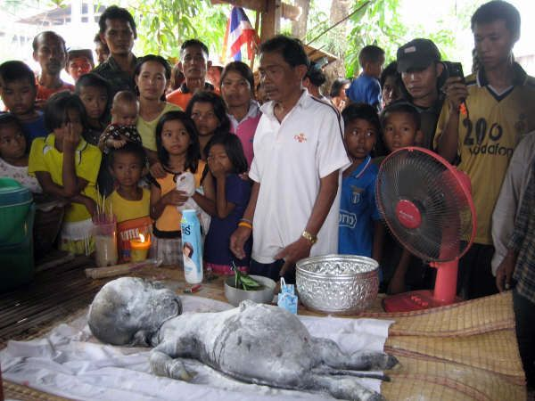 Таиландские тайны (7 фото)