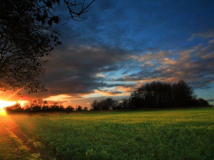Природа. Позитивный пост (34 фото)