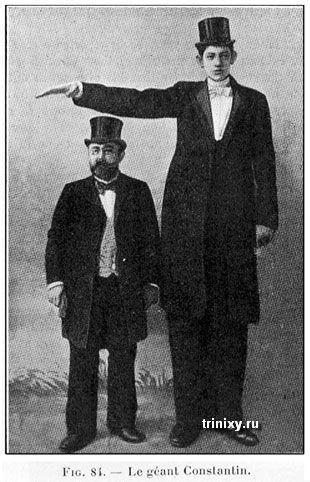 Самые высокие люди на планете (48 фото)
