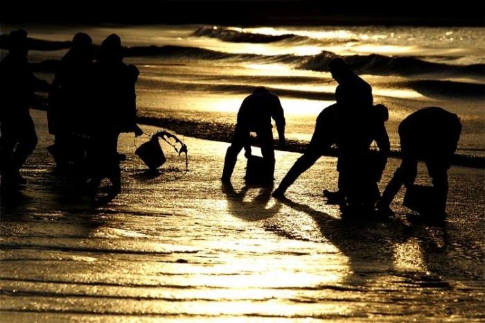 Желтое море в скором времени может стать Черным (13 фото)