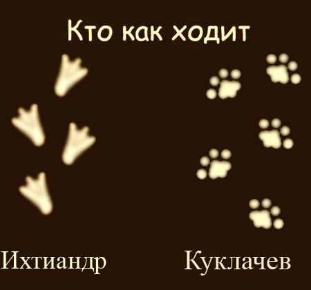 hodit_04.jpg