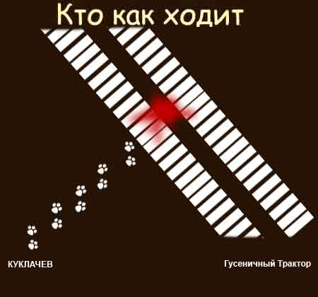 "Отличная фотожаба ""Кто как ходит"" (30 картинок)"