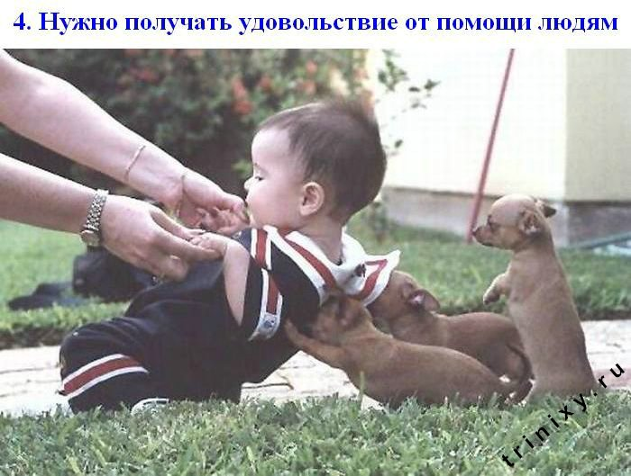 Законы счастья (18 картинок)