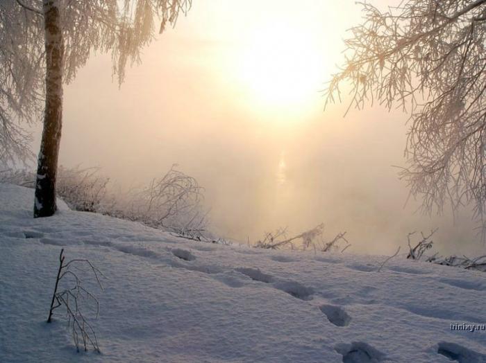 Русская зима (39 фото)