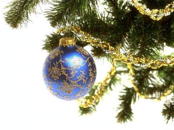 Настоящее новогоднее чудо