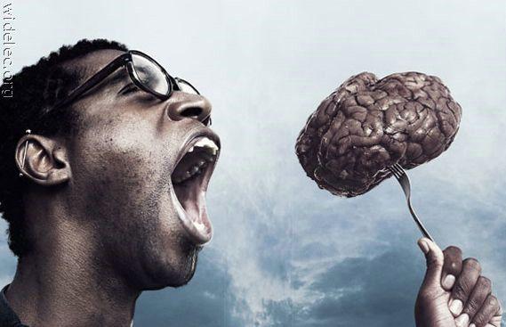 фото приколы мозг программулину