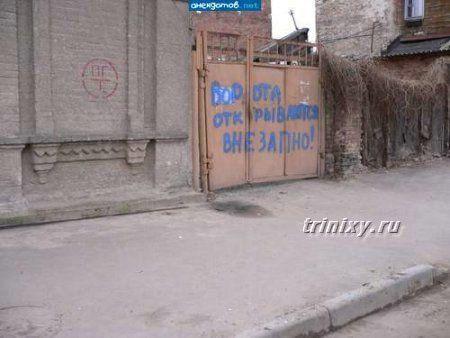 Идиотизмы и смешные надписи (77 фото)