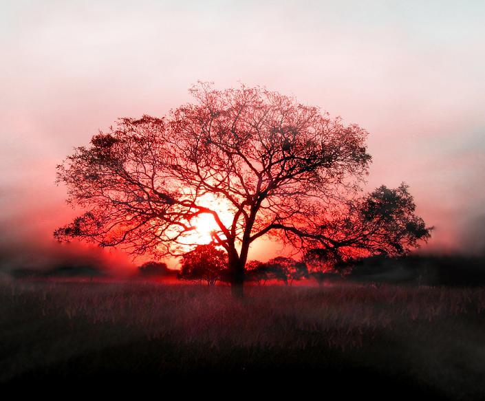Красивые фотографии нашей прекрасной планеты (50 штук)
