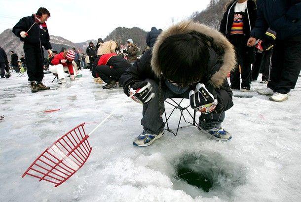 Фестиваль зимней рыбалки в Корее (14 фото)