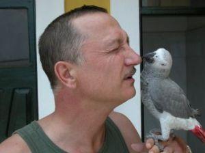 Нелегка попугаячья жизнь