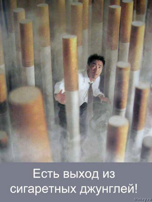 Ноу смокинг (28 фото)