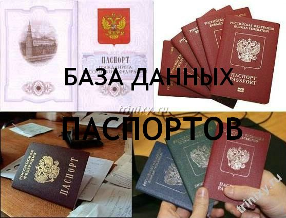 Шутка про паспорт