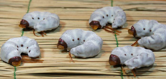 Съедобные личинки (6 фото)