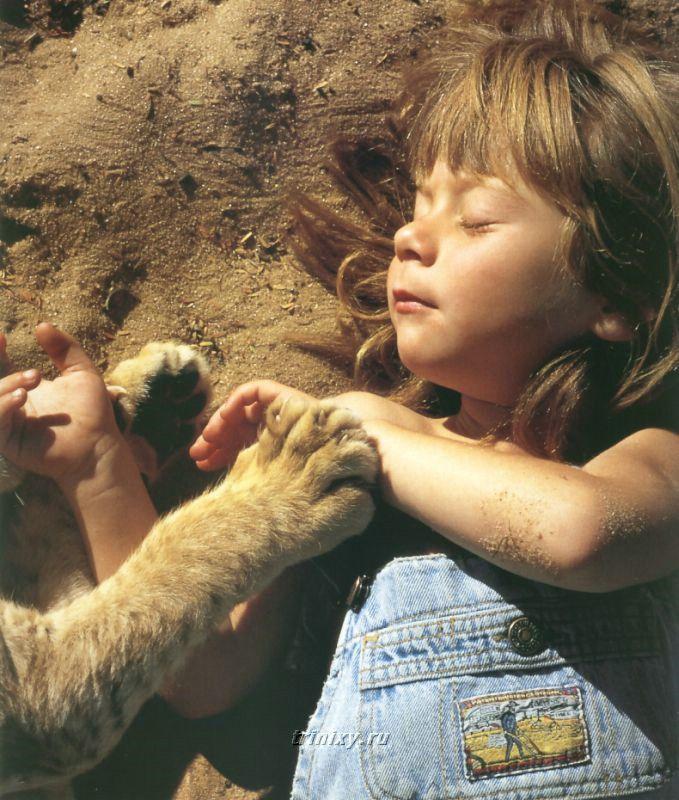 Маленькая принцесса Типпи (20 фото)