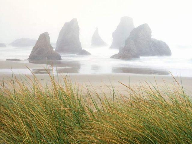 Фотографии природы (31 фото)