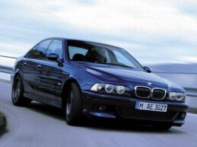 Встреча BMW и оленя (3 фото)