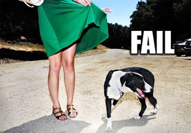 Неудачники: люди и животные (43 фото)